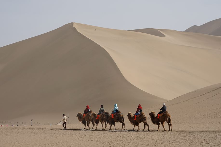 Beliebt bei den Besuchern: Kamelreiten in den Dünen Dunhuangs   -   Favorite camel riding for Dunhuang tourists